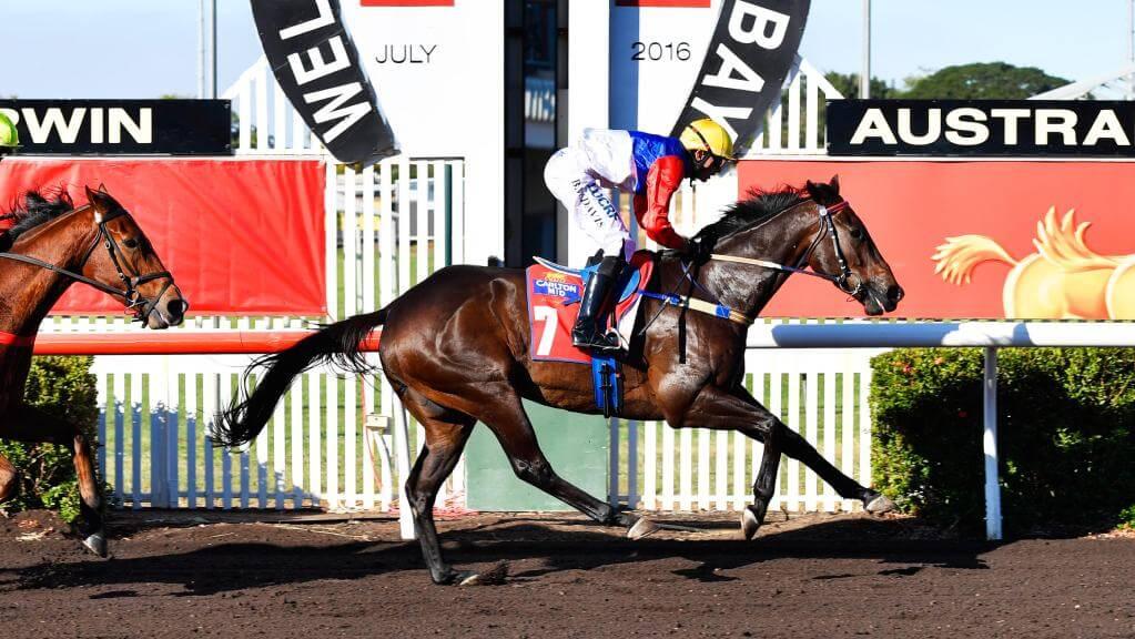 Jockey Brandon Davis eases NT Derby winner Finke across the finish at Fannie Bay. PICTURE: Ivan Rachman
