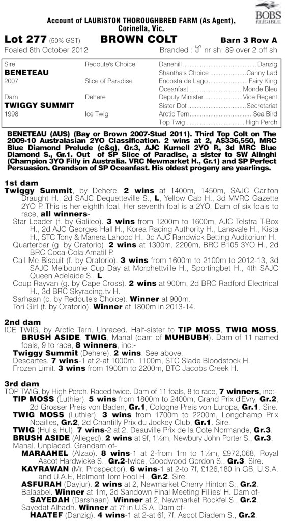 2014_Adelaide_Yearling_Sale_with_Index.pdf