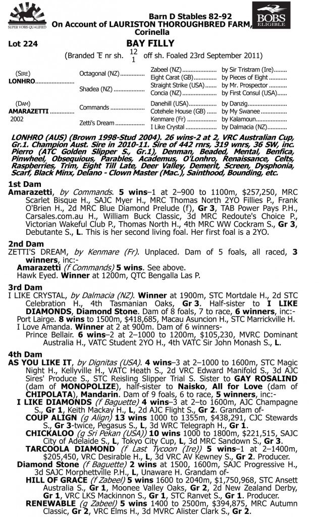 Lot 224 Lonhro x Amarazetti